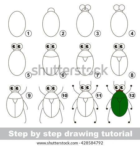 Step A Beetle Stock Images, Royalty-Free Images & Vectors