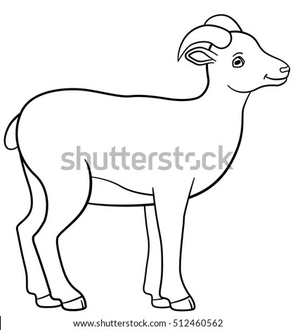 Urial Stock Images, Royalty-Free Images & Vectors