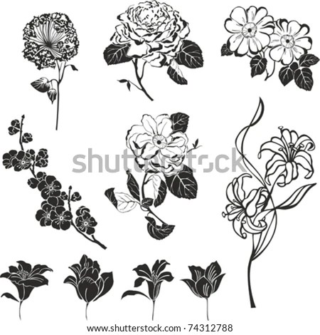 Black and white image sketch Stock Photos, Images