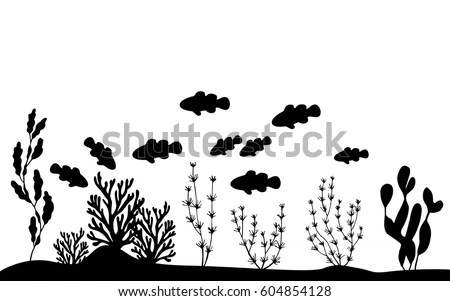 Fish Clowns Floating Near Seaweed On Stock Vector