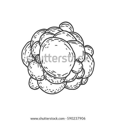 Cartoon Seamless Pattern Virus Cell Bacteria Stock Vector