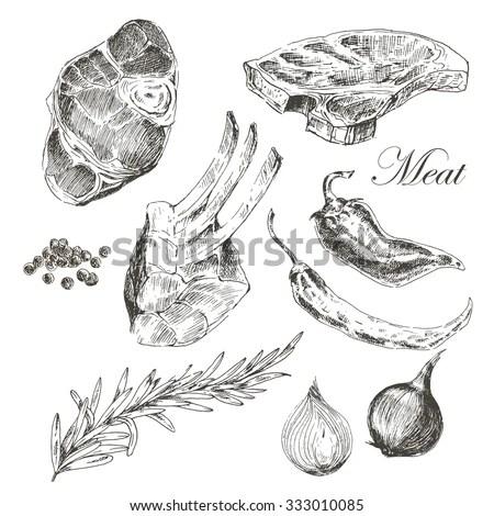 Vector Steak Meat Hand Drawing Pepper Stock Vector