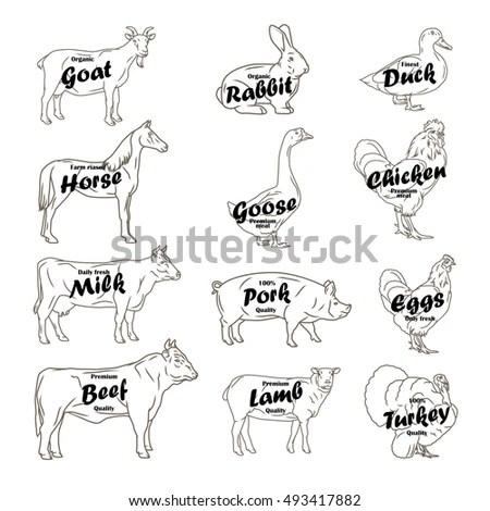 Farm Animals Collection Butchery Logo Label Stock