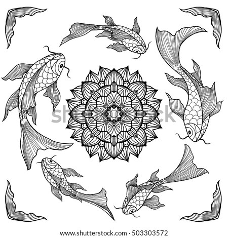 Beautiful Fish Stock Images, Royalty-Free Images & Vectors