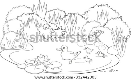 Coloring Duck Pond Stock Vector (Royalty Free) 332442005