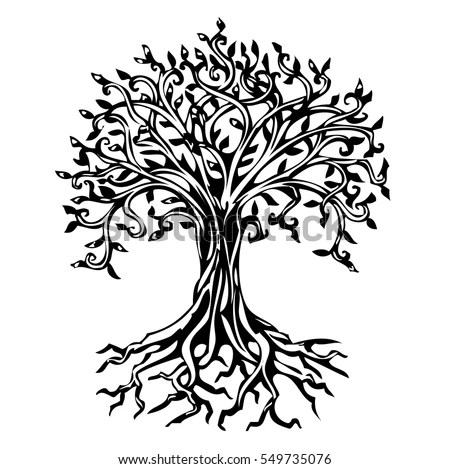 Y Full Tree Q