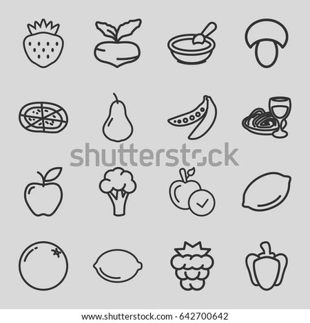 Fruits Vegetables Vector Collection Fruits Set Stock