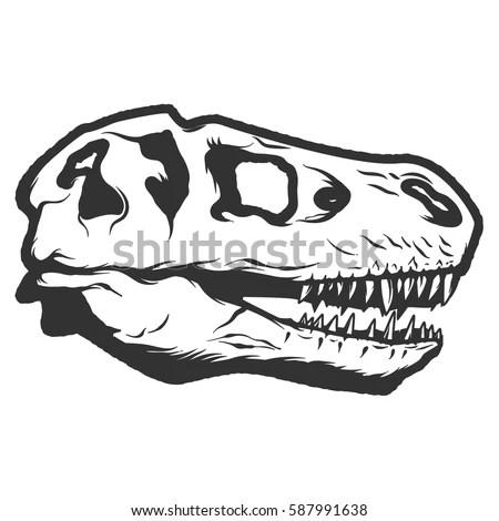 Dinosaur Fossil Diagram Dinosaur Fossil Cartoon Wiring