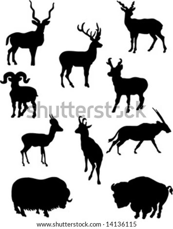 Set Lovely Animal Lovers Couples Silhouette Stock Vector