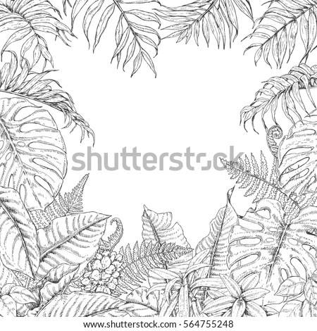 Tropical Leaves Coloring Pages Coloring Pages