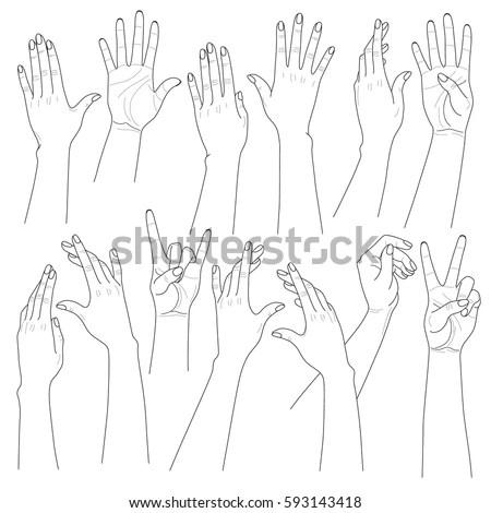 Monochrome Woman Hands Set Different Contoured Stock