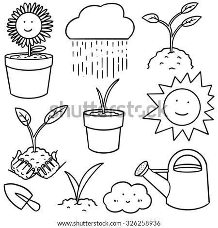 Sprouting Seed Stock Photos, Royalty-Free Images & Vectors