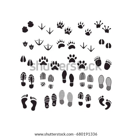 Elephant Footprint Stock Images, Royalty-Free Images