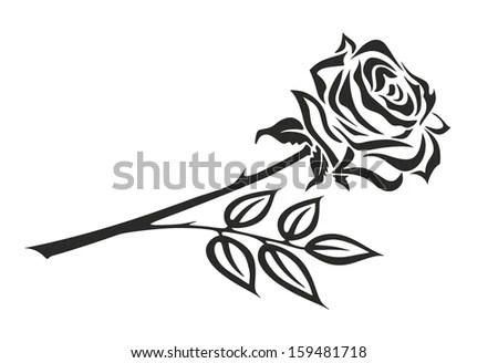Illustration Black White Rose Thorns Stock Illustration