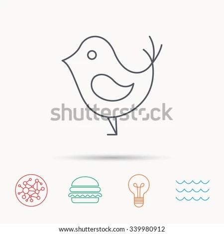 Ocean Birds In Flight Pond Ocean Wiring Diagram ~ Odicis