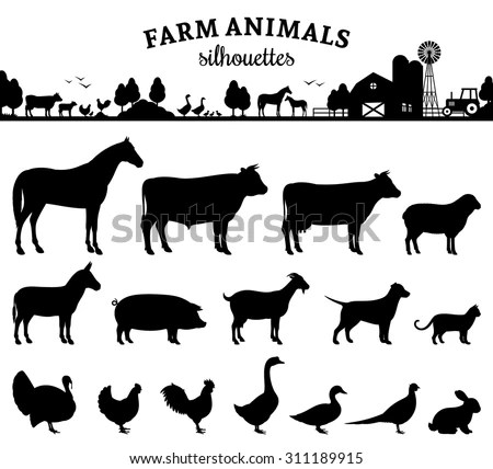 Vector Farm Animals Silhouettes Isolated On Stock Vector 311189915 Shutterstock