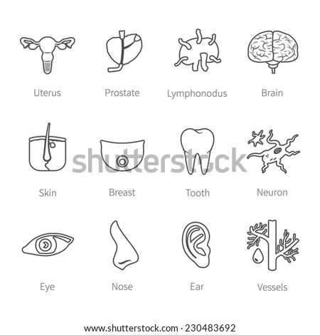 Uterus Coloring Pages Printable Coloring Pages