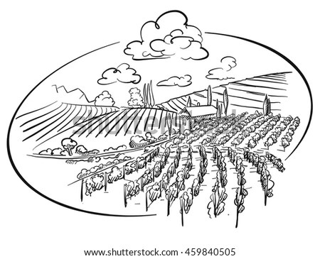 Hand Drawn Sketched Vineyard Landscape Circle Stock Vector