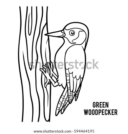 Coloring Book Children Green Woodpecker Stock Vector