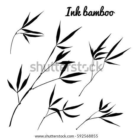 Handdrawing Ink Illustration Branches Bamboo Leaves Stock