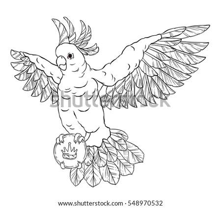 Cartoon Eagle Holding Royal Flush Outline Stock Vector