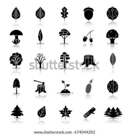 Tree Types Drop Shadow Black Glyph Stock Vector 674044282