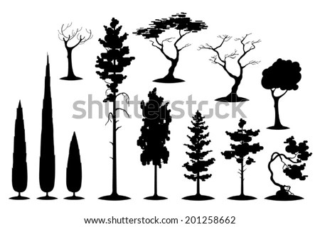Pine Tree Silhouette Stock Photos, Images, & Pictures