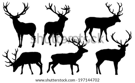 Deer Silhouette Stock Photos, Royalty-Free Images