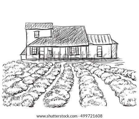 Hand Drawn Village Houses Sketch Field Stock Illustration