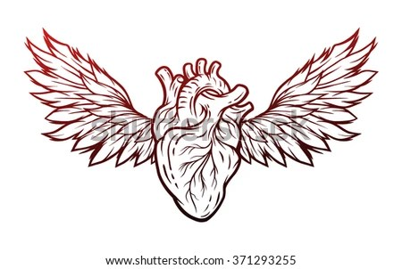 anatomical heart wings sign symbol