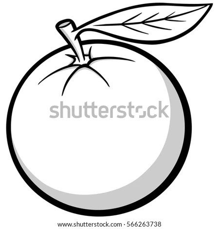 Florida Orange Illustration Stock Vector 566263738