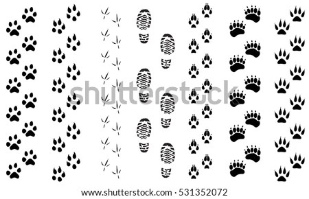 Bear Paw Stock Images, Royalty-Free Images & Vectors