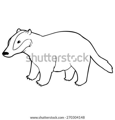 Badger Outline Illustration Stock Vector 270304148