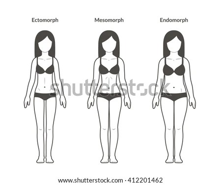 Female Body Types Stock Images, Royalty-Free Images