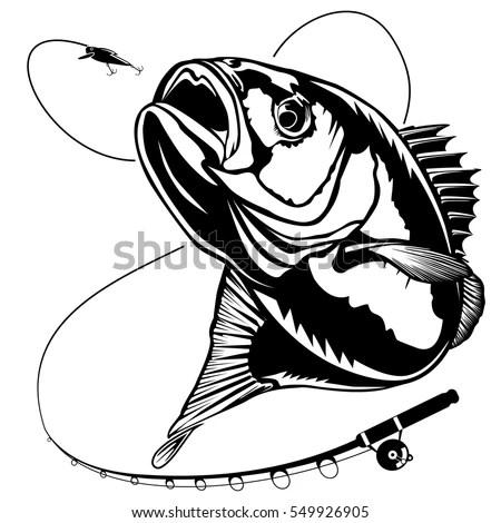 Bass Fish Perch Fishing Vector Illustration Stock Vector