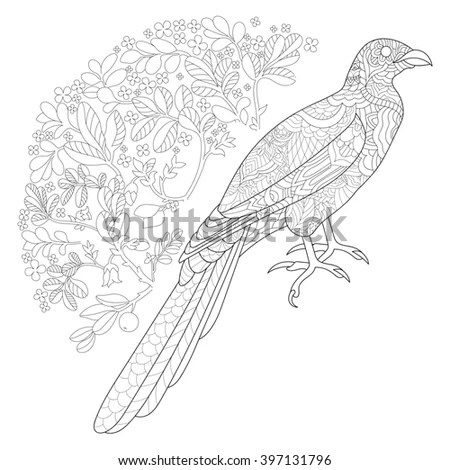 sailorlun's Portfolio on Shutterstock