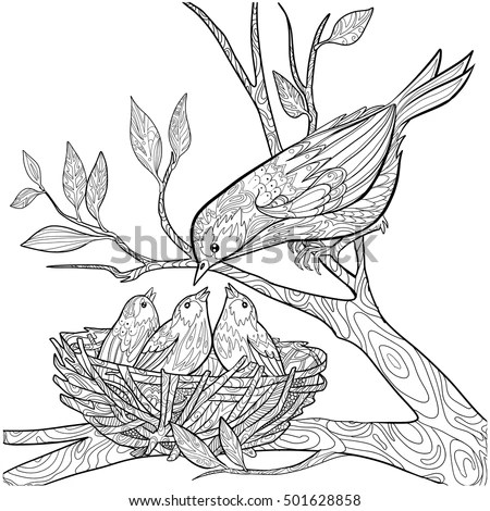 Decorative Doodle Bird Nest Chicks Coloring Stock Vector