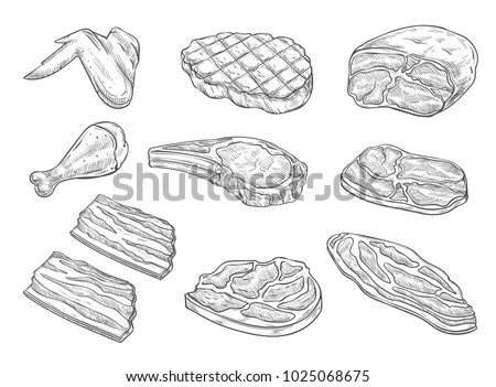 Meat Chicken Sketch Icons Vector Isolated Vector de stock