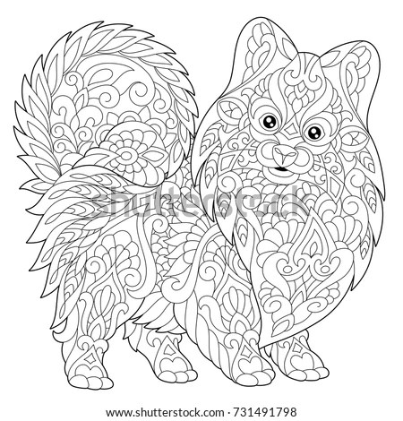 Coloring Page Pomeranian Dog Symbol 2018 Stock Vector