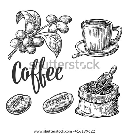 Coffee Drawing Stock Images, Royalty-Free Images & Vectors