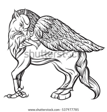 Vector Hand Drawn Realistic Illustration Hippogriff Stock
