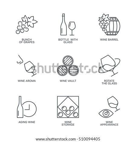 Thin Line Wine Icons Set Web Stock Vector 510094405