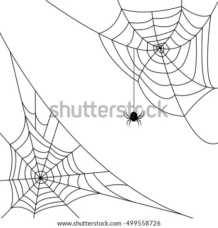 Cobweb Stock Images, Royalty-Free Images & Vectors