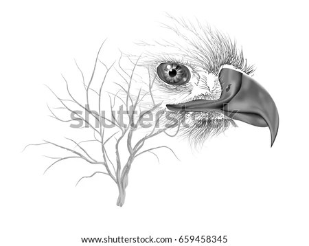 Double Exposure Drawing Eagle Tree Branch Stock Vector