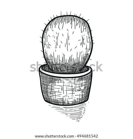 Doodle Cactus Pot Floral Ornament Coloring Stock Vector