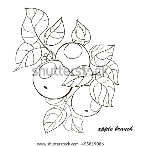 Cute Funny Little Cartoon Fly Insect Stock Vector