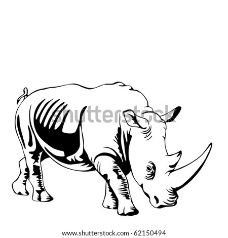 White Rhino ภาพสต็อก, ภาพและเวกเตอร์ปลอดค่าลิขสิทธิ์