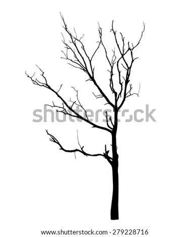 Tree Silhouette Detailed Vector Stock Vector 48819130