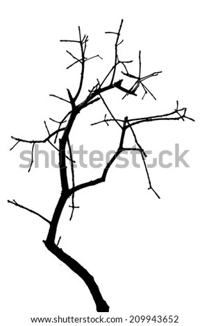 Vector Silhouette Hawk Perched On Dead Stock Vector