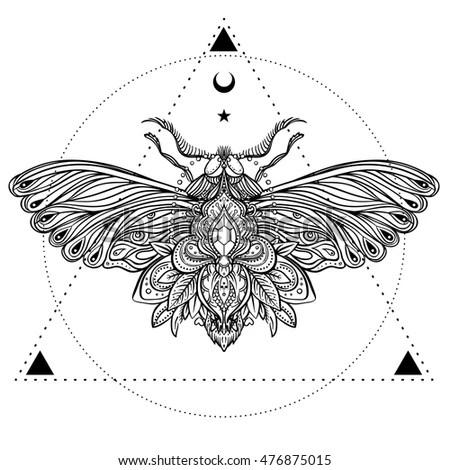 Black White Decorative Vector Illustration Moth Stock